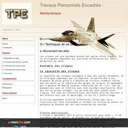 III / Techniques de vol de l'oiseau - Travaux Personnels Encadrés :