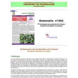 TRANSERT DE TECHNOLOGIE EN AGRICULTURE (Maroc) - JUILLET 2014 - Techniques de production du fraisier: résultats d'enquêtes au Loukkos