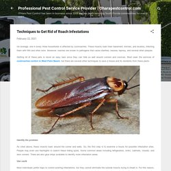 Techniques to Get Rid of Roach Infestations