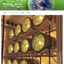 Futura Gaia (FR) - Système de culture GiGrow