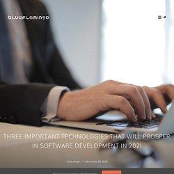 Three Important Technologies that will Prosper in Software Development in 2021