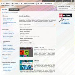 CDI - LYCEE GENERAL ET TECHNOLOGIQUE LA COLINIERE