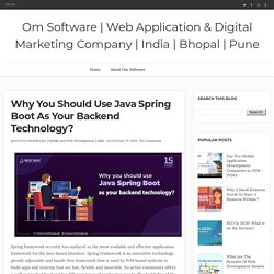 Why you should use java Spring Boot as your backend technology? - Om Software