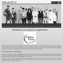 Techteam et le conseil en organisation