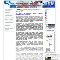 El Tecnico en Insercion - Curso Tecnico Orientacion e Insercion Laboral