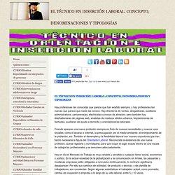 Curso Tecnico en Orientacion e Insercion Laboral