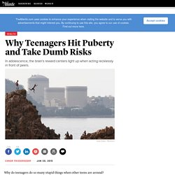 Why Teenagers Hit Puberty and Take Dumb Risks