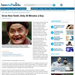 Grow New Teeth, Only 20 Minutes a Day - HowStuffWorks