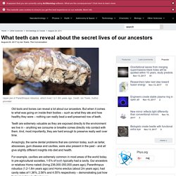 What teeth can reveal about the secret lives of our ancestors