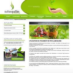 Tegument de psylIium blond - Naturopathie Ardèche