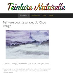 Teinture pour tissu avec du Chou Rouge - Teinture Naturelle