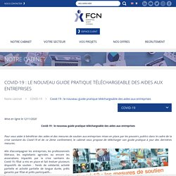 Covid-19 : le nouveau guide pratique téléchargeable des aides aux entreprises - Groupe FCN - Expertise Comptable et Commissariat aux Comptes