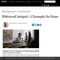 Télétravail Intégral : L'Exemple De Fizzer