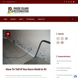 How To Tell If You Have Mold in RI