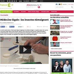Médecine légale : les insectes témoignent