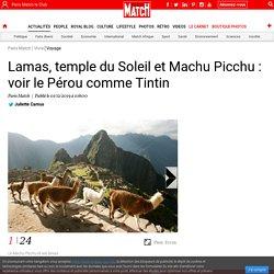 Lamas, temple du Soleil et Machu Picchu : voir le Pérou comme Tintin