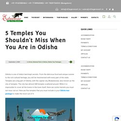 5 Temples You Shouldn't Miss When You Are in Odisha - Estuarine Village Resort