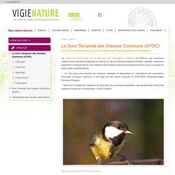 Le Suivi Temporel des Oiseaux Communs (STOC)