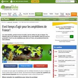 CONSOGLOBE 12/09/20 Il est temps d'agir pour les amphibiens de France !