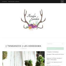 [ Tendances ] les kokedama - Roselia GardenRoselia Garden