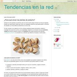 Tendencias en la red: ¿Para qué sirven las plantas de pistacho?
