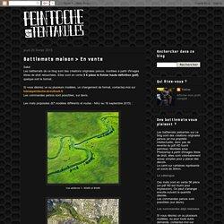 Peintoche & Tentakules: Battlemats maison > En vente