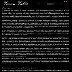 Tenzin Tulku - Réincarnation