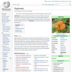 Tephrosia - Wikipedia