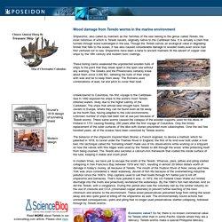 PoseidonSciences