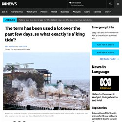 The term has been used a lot over the past few days, so what exactly is a' king tide'? - ABC News