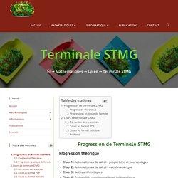 Terminale STMG - Le Buisson des Mathématiques