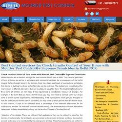 Termite Control Services in India