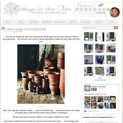How to Age Terra Cotta Pots - Cottage in the Oaks