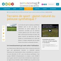 Terrains de sport : gazon naturel ou pelouse synthétique ?