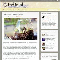 Terrarium Centerpieces&|&Indie Bliss - StumbleUpon