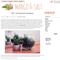 DIY // Un terrarium miniature