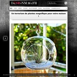 Un terrarium de plantes magnifique pour votre maison !