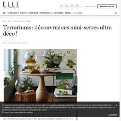 Terrariums : découvrez ces mini-serres ultra déco ! - Elle Décoration
