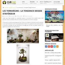 Les terrariums : la tendance design d'intérieur – Cuboak