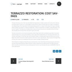Terrazzo Restoration: Cost Savings - Tercon Systems