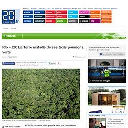 Rio + 20: La Terre malade de ses trois poumons verts