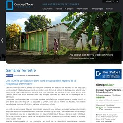 Samana Terrestre - Excursions Punta-Cana Concept tours