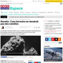 Rosetta : l'eau terrestre ne viendrait pas des comètes