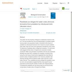 Biological Conservation 111 (2003) 371–376 Reedbeds as refuges for water voles (Arvicola terrestris) from predation by introduced mink (Mustela vison)