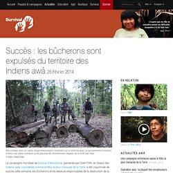 Succès : les bûcherons sont expulsés du territoire des Indiens awá