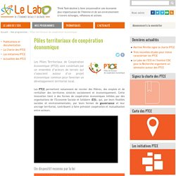 Pôles territoriaux de coopération économique. Le Labo de l'économie sociale et solidaire. lelabo-ess.org