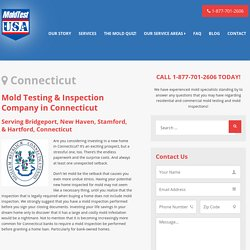 Mold Inspection Connecticut