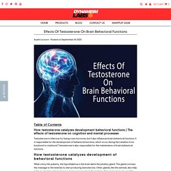 Effects Of Testosterone On Brain Behavioral Functions – Dynamism Labs