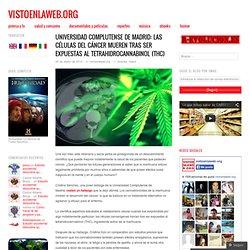 Universidad Complutense de Madrid: Las células del cáncer mueren tras ser expuestas al tetrahidrocannabinol (THC)