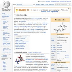 Tétrodotoxine